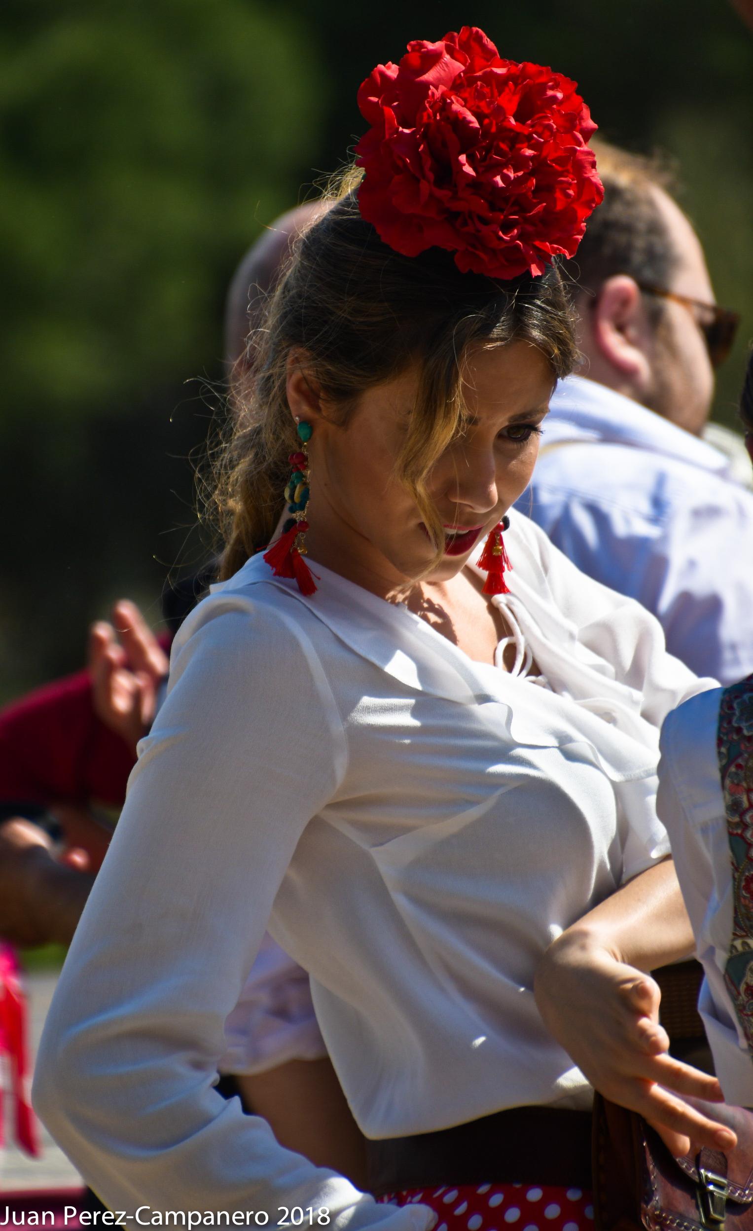 romeria-rociera---613jpg_41284612144_o