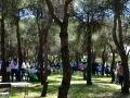 romeria-rociera---450jpg_42002626171_o
