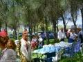 romeria-rociera---451jpg_42002636351_o
